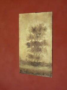 arbres-en-contre-jour-2